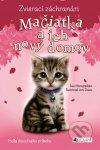 Mačiatka a ich nový domov